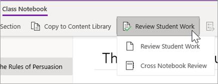 Knop werk van leerling/student beoordelen. Werk van leerling/student beoordelen en meerdere notitieblokken bekijken zijn opties.
