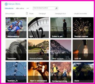 Screenshot van een activabibliotheek in SharePoint. Dit bevat miniatuurafbeeldingen van verschillende video's en afbeeldingen uit de bibliotheek. Ook bevat het kolommen met standaardmetagegevens voor media-activa.