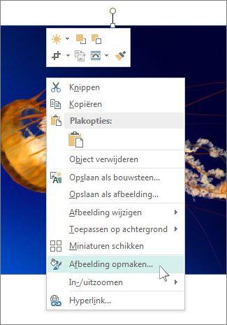 Schermafbeelding van de opties voor het opmaken van afbeeldingen in Publisher.