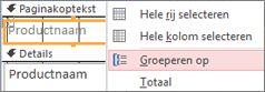Selecteer de optie Groeperen op om een gegroepeerd rapport te maken