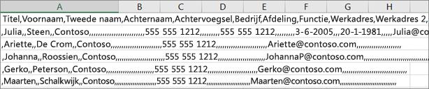 Een voorbeeld van een CSV-bestand opgeslagen in de XLS-indeling.