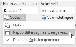 Optie Rapportfilterpagina's weergeven