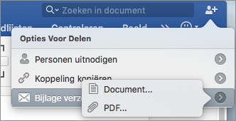 Selecteer de indeling van het document dat u wilt verzenden, een Word-document of een PDF-bestand.