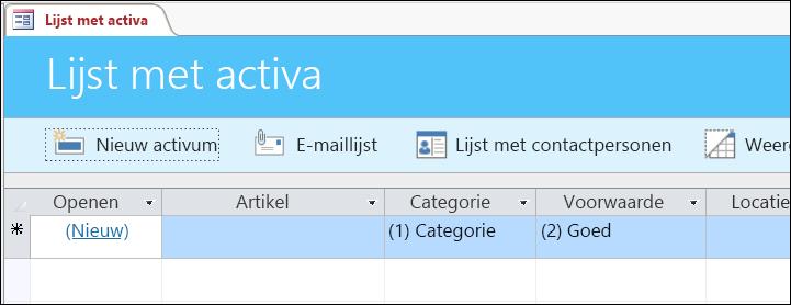 Formulier activalijst in de activadatabase-sjabloon van Access