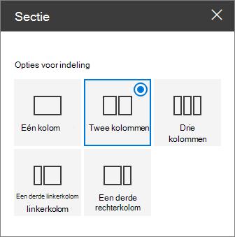 Sectie indeling deelvenster