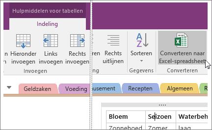 Schermafbeelding van de knop Converteren naar Excel-spreadsheet in OneNote 2016.