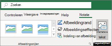 Knop alternatieve tekst op het lint van Excel voor Windows