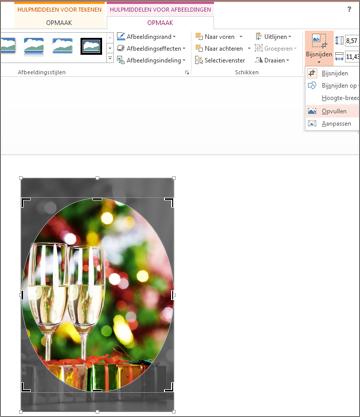 Afbeelding waarin de vorm Crop to Fill is toegepast