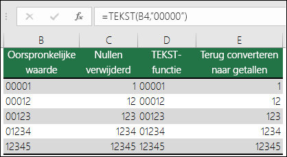 """Voorbeelden van het gebruik van TEKST om voorloopnullen op te maken. =TEKST(A2;""""00000"""")"""