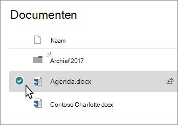 Schermafbeelding van een bibliotheek met een bestand is geselecteerd