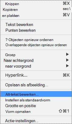Context menu voor shapes met de optie alternatieve tekst geselecteerd.
