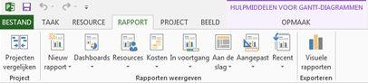 het tabblad rapport in project 2013