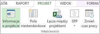Obraz przycisku Informacje o projekcie