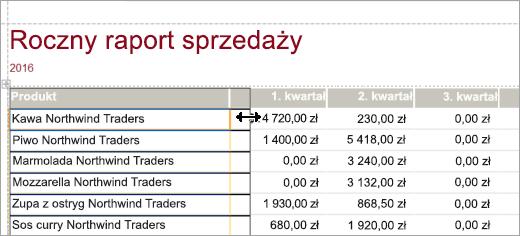 Wycinek ekranu przedstawiający produkt w rocznym raporcie sprzedaży