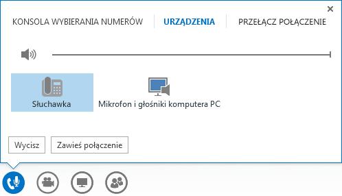 Zrzut ekranu przedstawiający kontrolki połączenia audio.