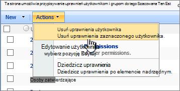 Polecenie Usuń uprawnienia użytkownika z menu Akcja