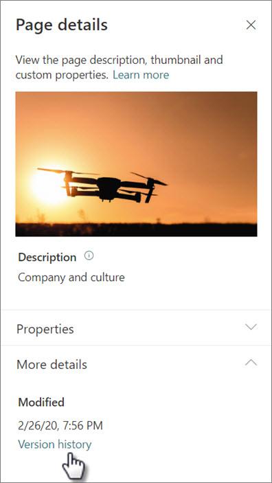Zrzut ekranu przedstawiający Link historia wersji w obszarze Szczegóły strony