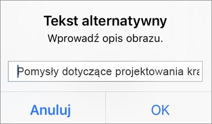 Menu Tekst alternatywny dla obrazu w aplikacji Outlook dla systemu iOS
