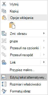 Menu Win32 Excel edytować tekst alternatywny dla obrazów