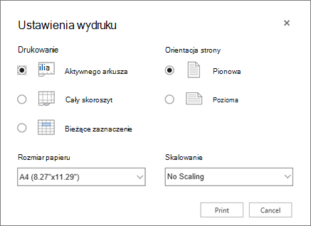 Opcje ustawień drukowania po kliknięciu pozycji Plik > Drukuj