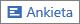 Ikona Ankieta