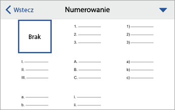 Rozwinięte polecenie Numerowanie z opcjami formatowania