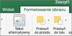 Klawisz ALT tekstu dla obrazów na Wstążce w programie Excel dla komputerów Mac