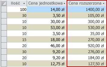 Pole obliczeniowe wwidoku arkusza danych