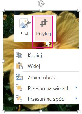 Kliknij prawym przyciskiem myszy obraz, a następnie kliknij polecenie Przytnij