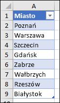 Tabela programu Excel używana jako źródło listy sprawdzania poprawności danych