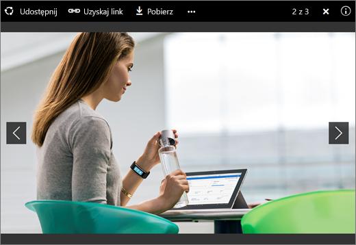 Zrzut ekranu przedstawiający przeglądarkę obrazów w usłudze OneDrive dla Firm w programie SharePoint Server 2016 z dodatkiem Feature Pack 1
