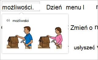 Słownik obrazów