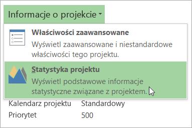 Opcje informacji o projekcie