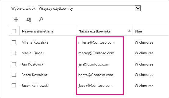 Kolumna Nazwa użytkownika w centrum administracyjnym usługi Office 365.