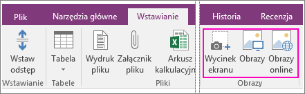 Zrzut ekranu przedstawiający opcje wstawiania obrazów w programie OneNote 2016.