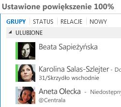 Zrzut ekranu: wyświetlanie w skali 100%