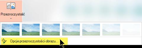 Opcje przezroczystości obrazu umożliwiają wybranie niestandardowego poziomu krycia obrazu