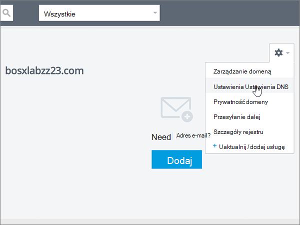 Kliknięcie pozycji DNS Settings (Ustawienia DNS) na liście