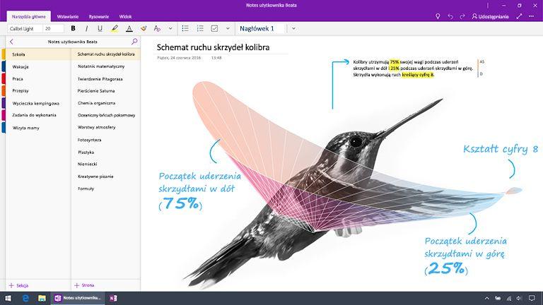 Zrzut ekranu przedstawiający program OneNote dla systemu Windows 10