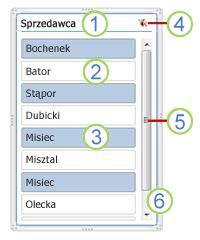 Elementy fragmentatora tabeli przestawnej