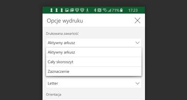 Lista dostępnych opcji drukowania w oknie dialogowym Drukowanie