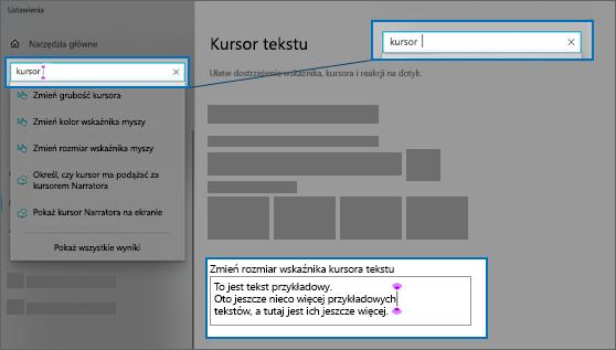 Strona Ustawienia dla kursora tekstu