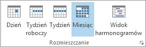 Grupa Rozmieszczanie na karcie Narzędzia główne: dzień, tydzień, tydzień roboczy, miesiąc i harmonogram