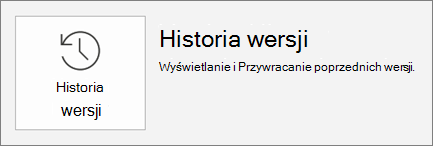 Przycisk historia wersji znajdujący się na karcie plik.