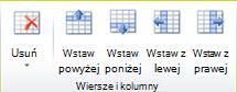 Grupa wierszy i kolumn tabeli w programie Publisher 2010