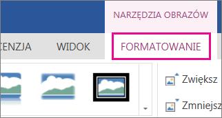 Obraz opcji na karcie Formatowanie na wstążce Narzędzia obrazów
