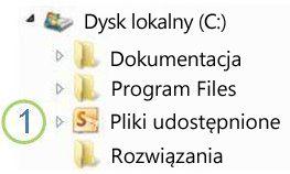 Ikona folderu udostępnionego w Eksploratorze Windows