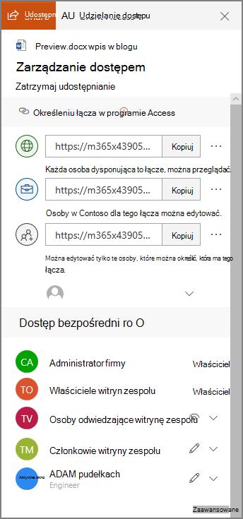 Zrzut ekranu zarządzania dostępem przedstawiający panel udostępnianie łączy i bezpośredni dostęp.