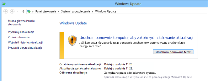 usługę Windows Update,