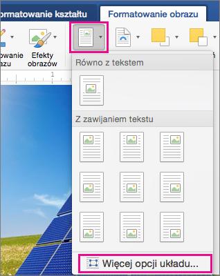 Pozycje Położenie i Więcej opcji układu wyróżnione na karcie Formatowanie obrazu.